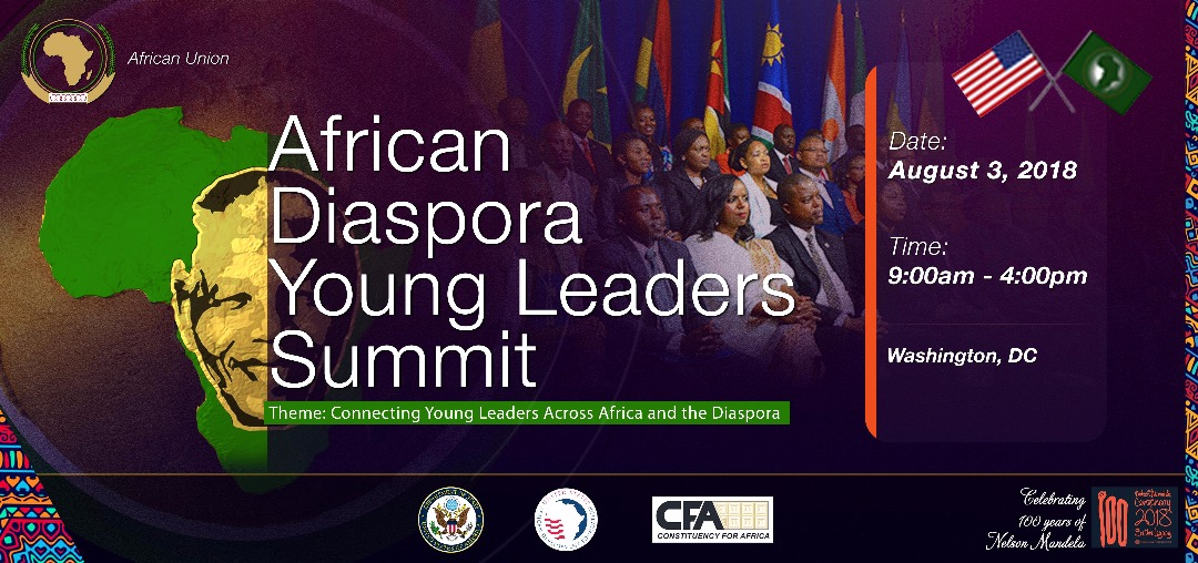 Young Africans engage their peers in the Diaspora